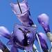 RHS Chelsea Flower Show 2012