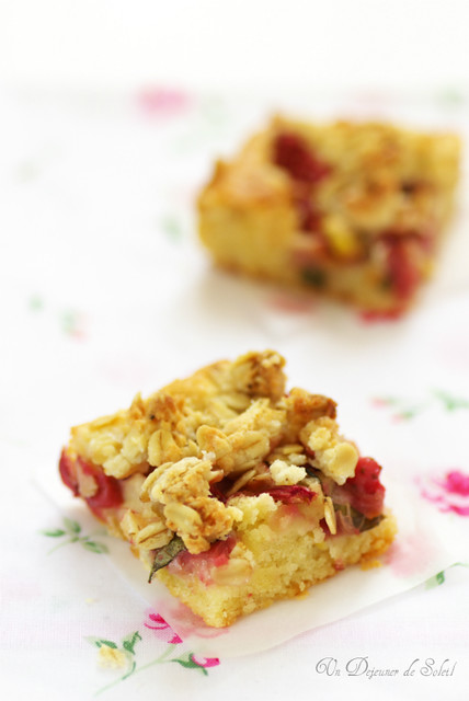 Strawberries and rhubarb crumb cake