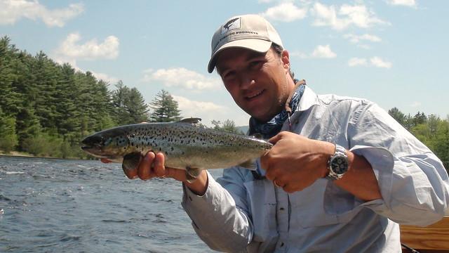 Nice WB salmon