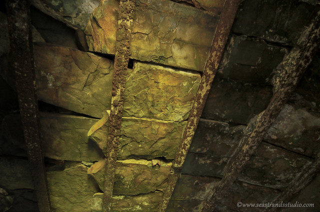 Root cellar ceiling