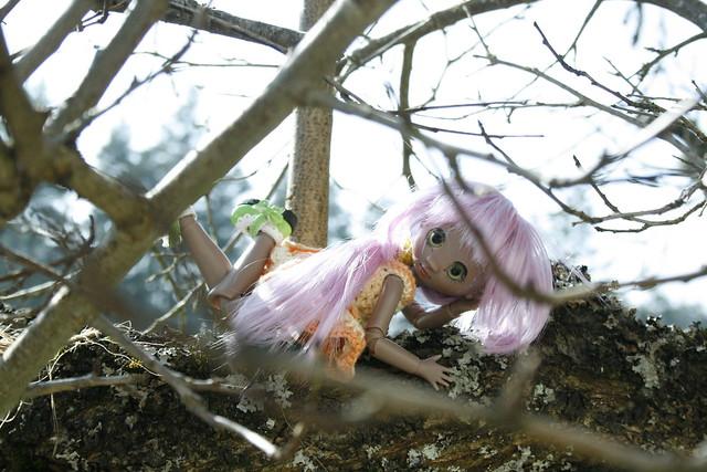 Façon Badou : mes petites merveilles (Grosse MAJ p11♥ 28.08) - Page 2 13378431264_0b18b6a45f_z