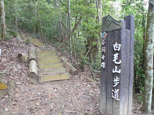 20140426-白毛山 (25)