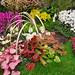 2016 : Belgique : Floralies gantoises