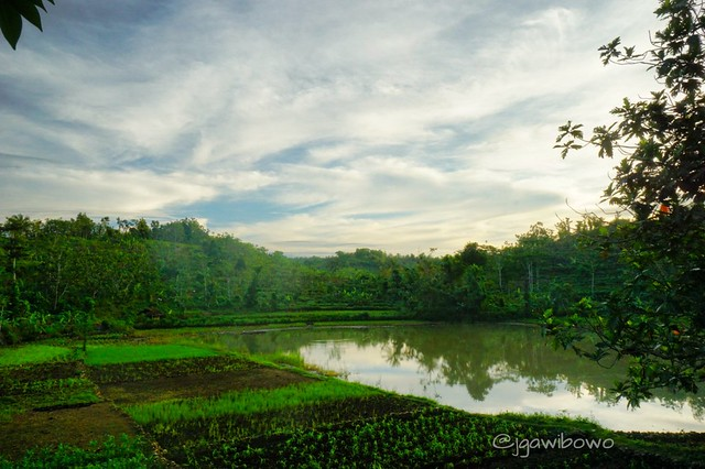 Morning after sunrise in Gunung Kidul Yogyakarta