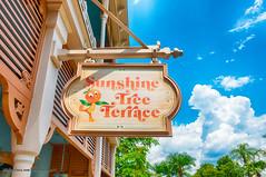 #MagicKingdom Sunshine Tree Terrace HDR 2016