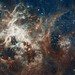 Hubble's Panoramic View of a Turbulent Star-Making Region by NASA Goddard Photo and Video