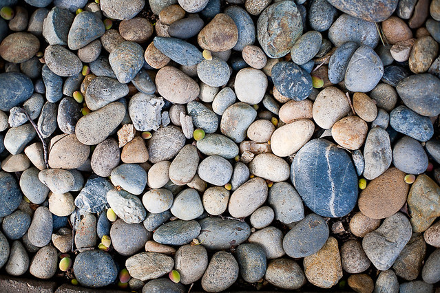 Stones in my backyard