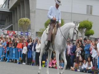 video 01 Club Ansofe y Hermanos Garcia demostracion doma vaquera V Feria Abril Las Palmas de Gran Canaria 2012