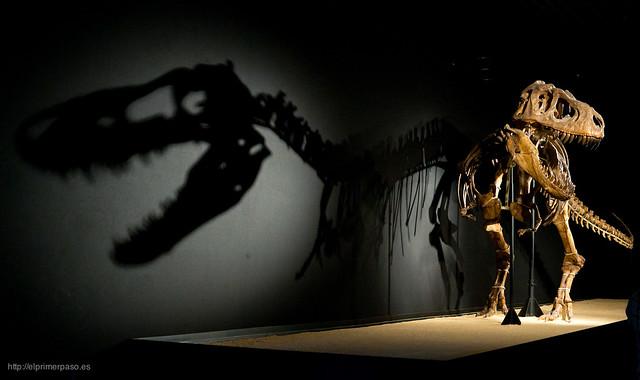 Museo de la Ciencia CosmoCaixa de Madrid