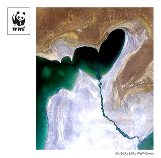 WWF-Canon Pic of the Week #11- Aral Sea From Space
