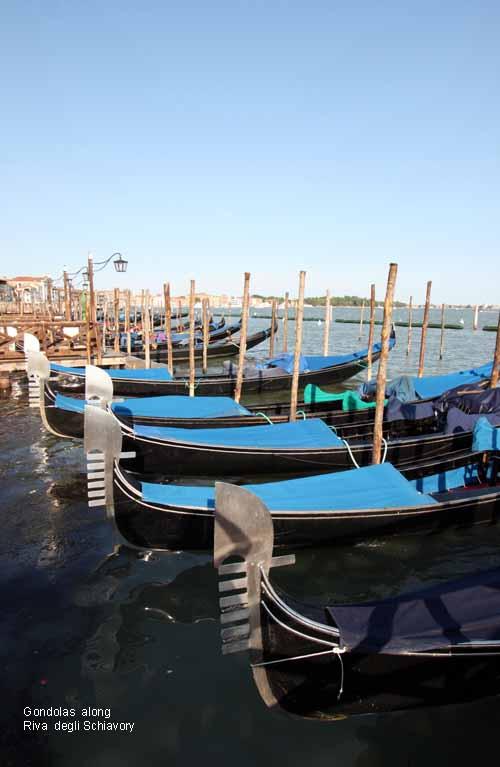 Venice 24