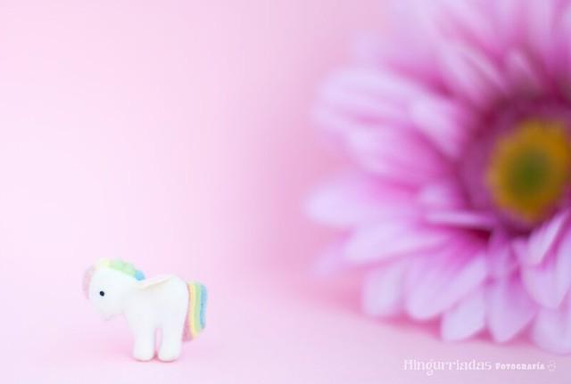 81/365 Pequeño Pony