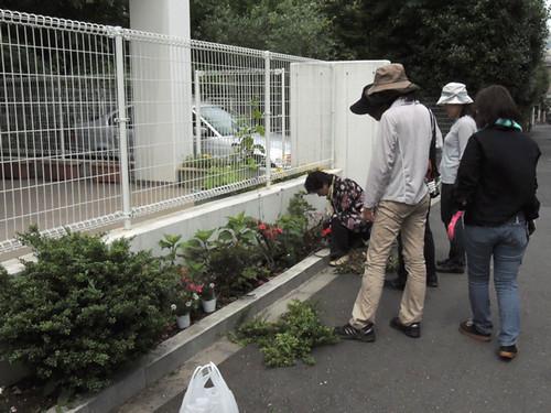 2012-6-2ビオトープガーデン実習-5