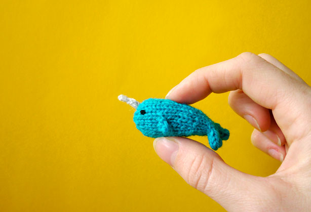 Tiny Narwhal Flickr - Photo Sharing!