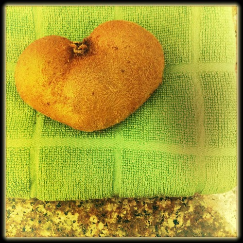 Heart Shaped Kiwi