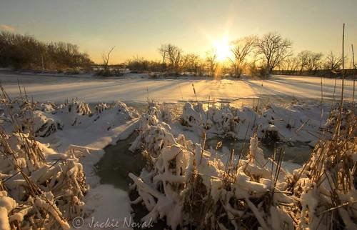 winter sunset nature landscape winterphotography