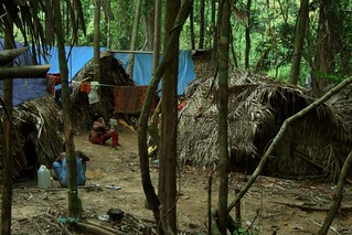 tribes in Taman Negara