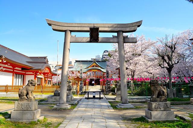 2014京版賞櫻自助旅行