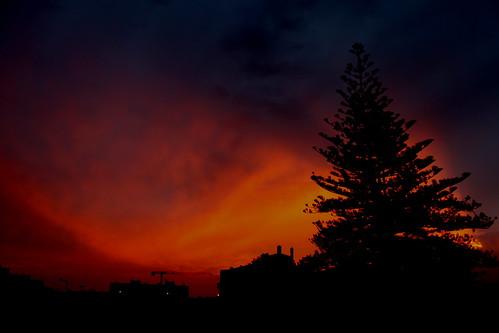 Por sol varanda loulé (11)