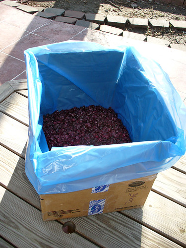 2012-03-13 - 25 lbs of Dried Cranberries - 0015
