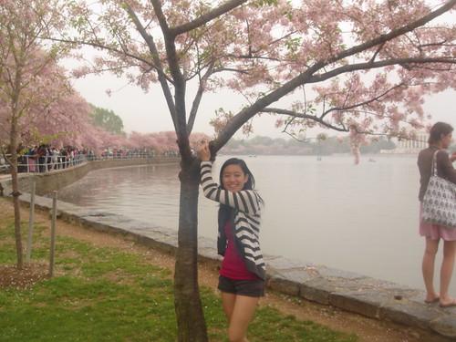 me w/ cherry blossom tree