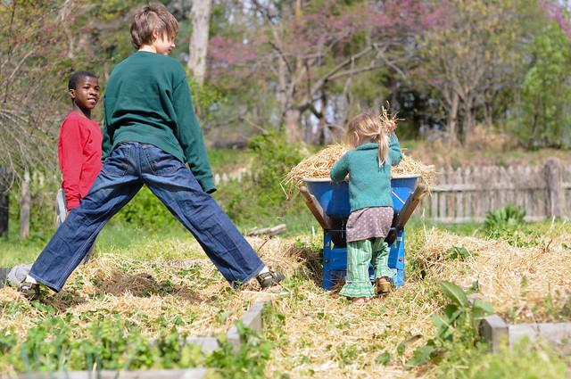 March 30 Garden
