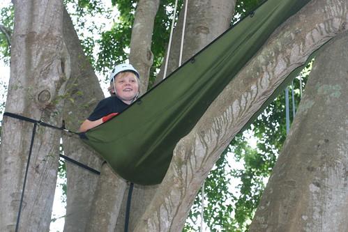 tree climbers 5