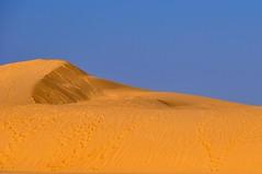 Una duna bañada por el sol.