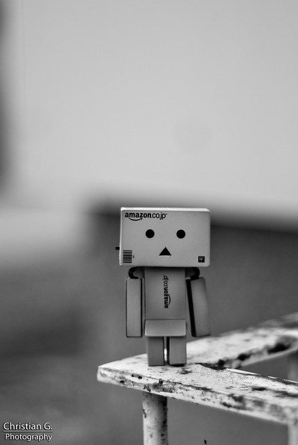 Danbo Black and White 2