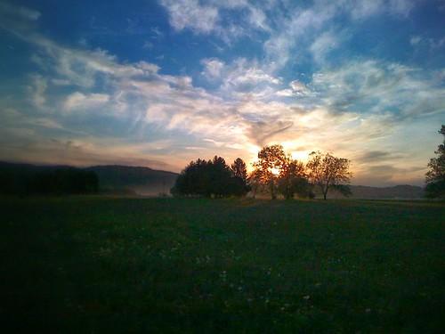 In the field by dusan.smolnikar