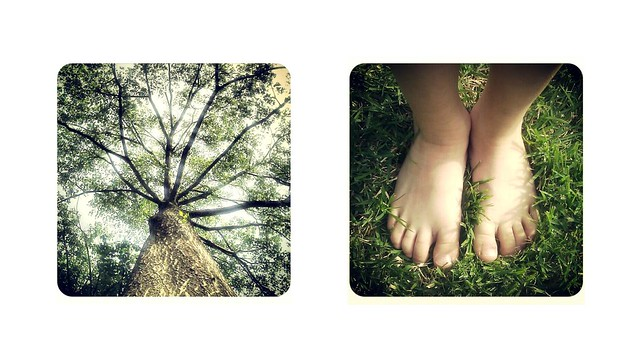 tree and feet-in-grass