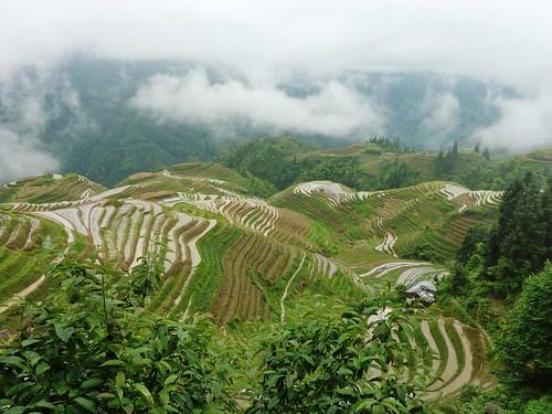C-Guangxi-Pingan-Terrasse des 7 etoiles (48)