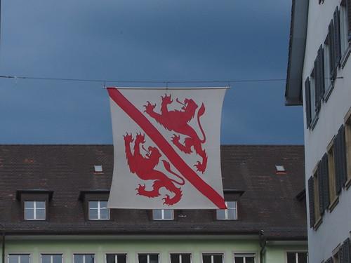 Schreitende rote Löwen, Fahne von Winterthur