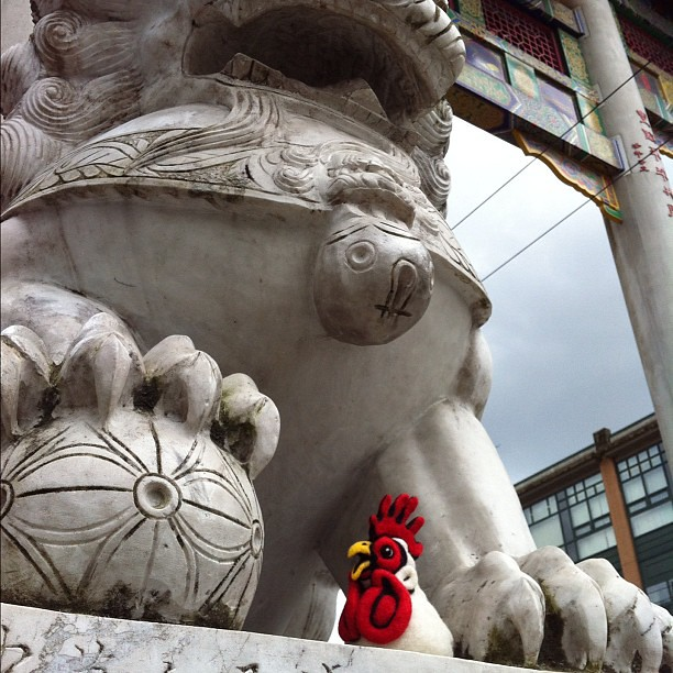 Felted Chicken Head in China Town