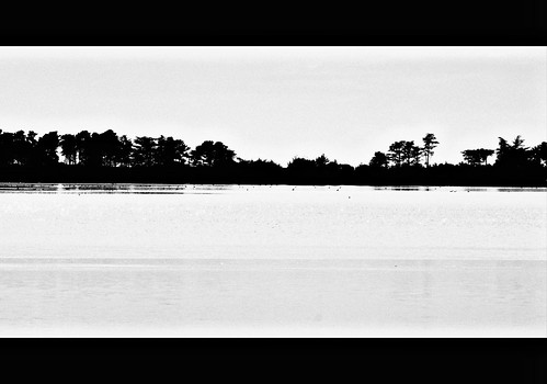 Landscape in black&white