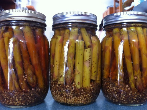 Pickled asparagus by bobbie-sue