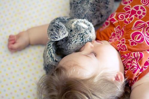 bunny snooze