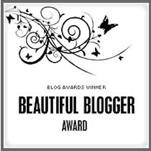 award_beautiful-blogger-award_2010