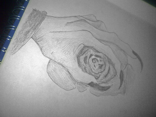 Hand Holding Rose Drawing Hand Holding a Rose