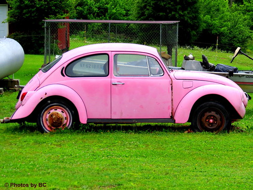 German Mary Kay Car?