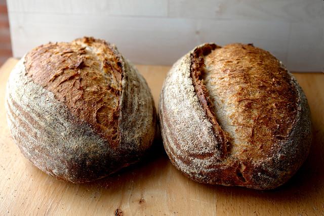 paine cu 3 maiele 0107