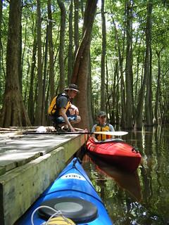 Sparkleberry Swamp Jun 2, 2012 12-27 PM