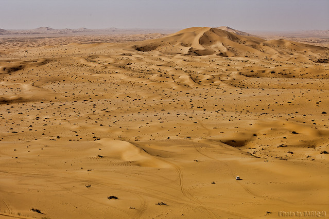 From the top of dunes