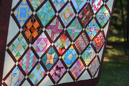 Farmer's Wife Quilt Top - detail at bottom