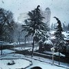#qar #çovğun #30March #spring #snow #snowstorm #blizzard #view from #Ganja #Criminal #Court #Azerbaijan #az #aztagram
