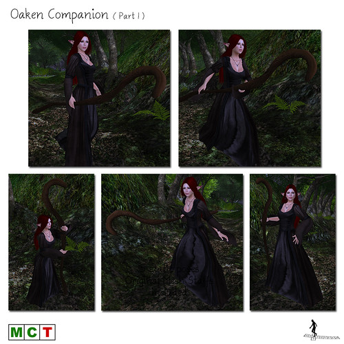 Oaken Companion (Part 1)