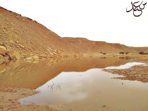 IMG_2012-04-05-15-42-59 by سعد اللويمي