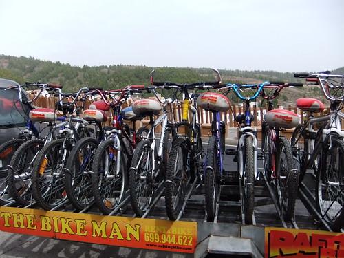Bikes on a Trailer