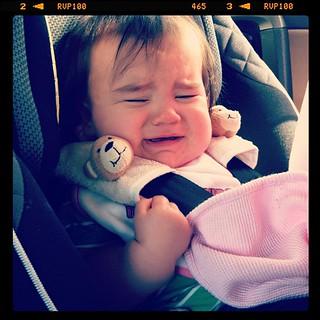 Izzy no likey road trips.