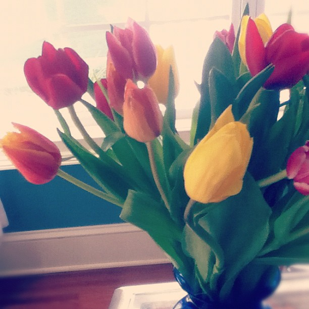 Flowers for Easter from my sister in London! Thanks @michaelaraej and Kurt!